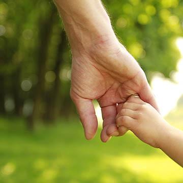 Adoption Family Lawyers Attorneys Albany Capital Region NY